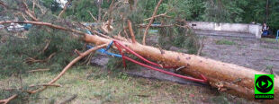 Zniszczone dachy, powalone drzewa. Nawałnice przeszły nad Polską